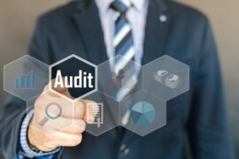 WHAT IS PURPOSE OF PUBLIC SECTOR AUDIT?